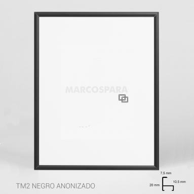 Marco de Aluminio Negro TM2